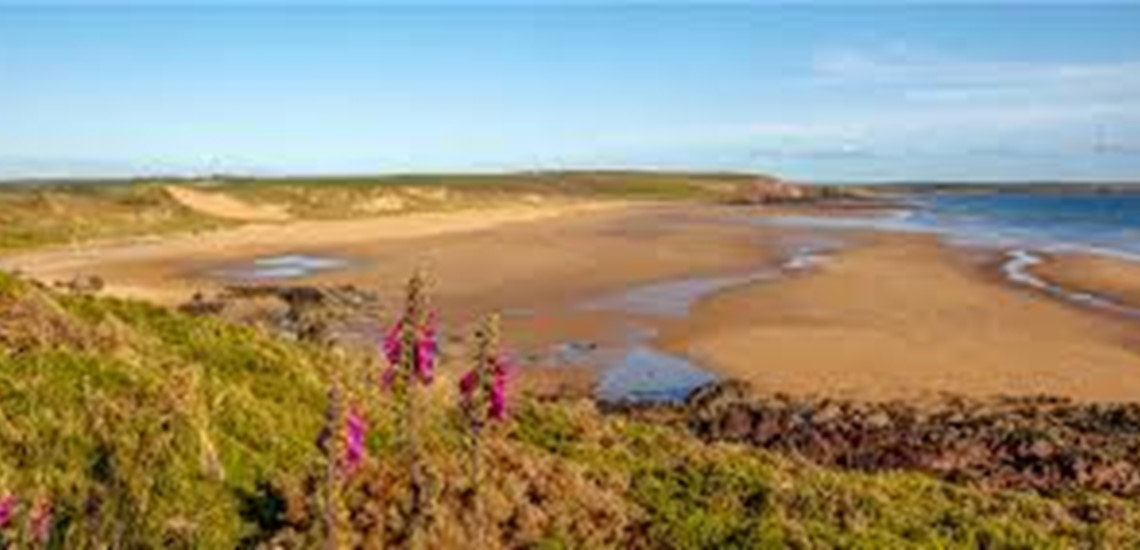 Surfing Lessons Freshwater West Pembrokeshire | Surf  Courses